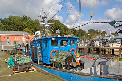 Fischerboot im Fischereihafen von Sassnitz auf Rügen