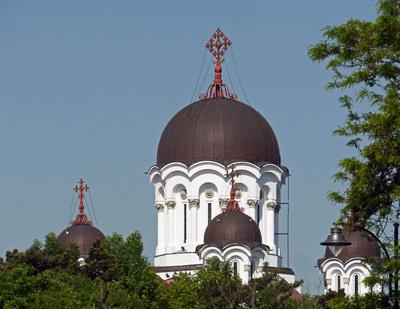 Die Orthodoxen Kirchen des Ostens . . . .