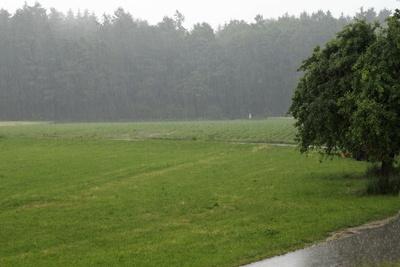 Sommerregen 1