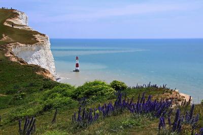 """Landspitze """"Beachy Head"""" an der englischen Südküste"""