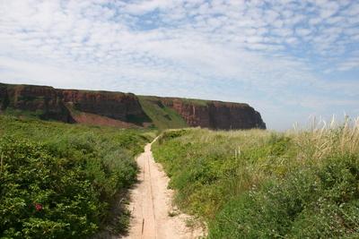 Steilklippe von Helgoland