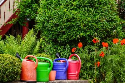 Ein Gartenfreund
