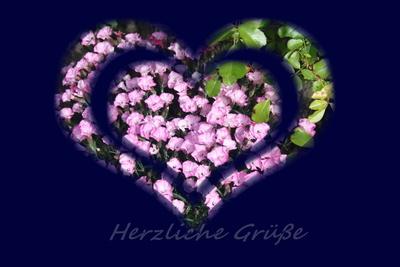 Herzlich 2