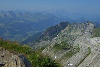 Alpstein: Westausläufer