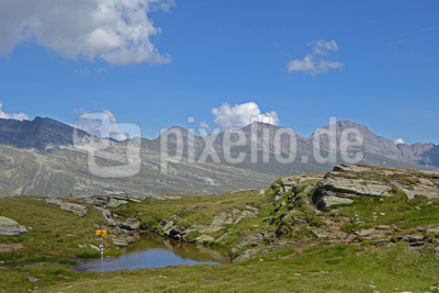 Kleine Tümpel am Höhenweg