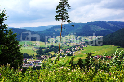 Wanderhimmel Baiersbronn