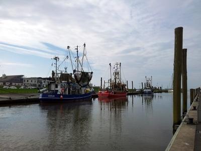 Im Fischereihafen Dorum 4