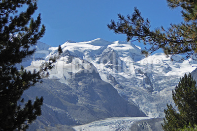 Piz Cambrena (3604 m)