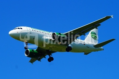 Airbus A 319-112 landet