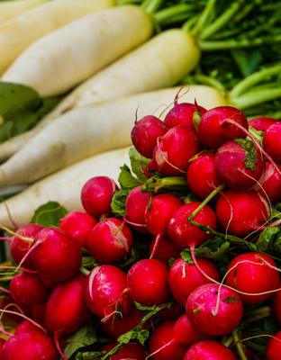 Viktualienmarkt - Gemüse - Radi