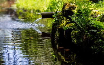 Quellwasser-Zufluss