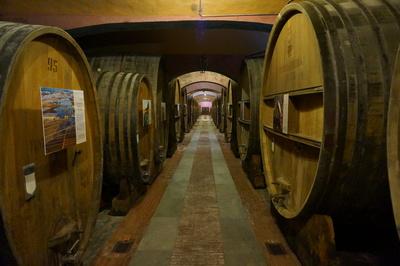 Weinkeller in Barolo, Italien (Piemont)