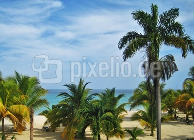 Jamaika am Seven Miles Strand