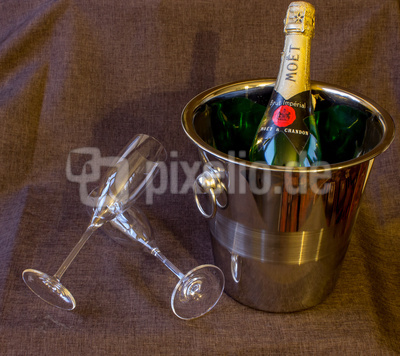 Romantic Champagner