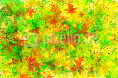 Hintergrund / Bunte Blätter