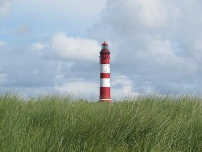 Leuchtturm und Dünengras