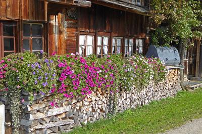Holz und Blumen vor der Hütte