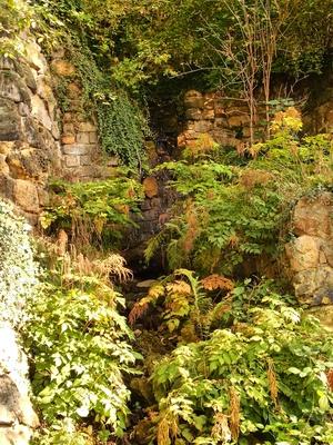 Verwunschener Wasserlauf im Park von Schloss Albrechtsberg