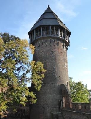 Hauptturm von Burg Linn