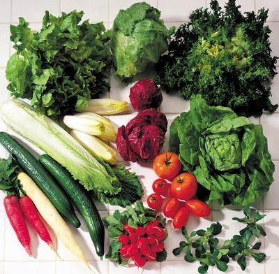 Gemüse- und Salatsorten