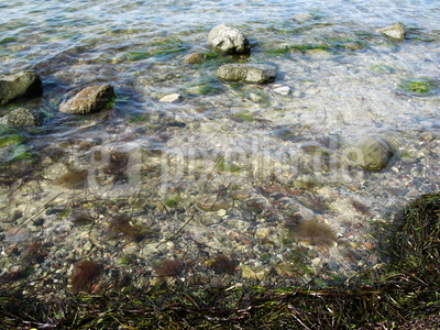 Insel Poel Schwarzer Busch Steine im Wasser