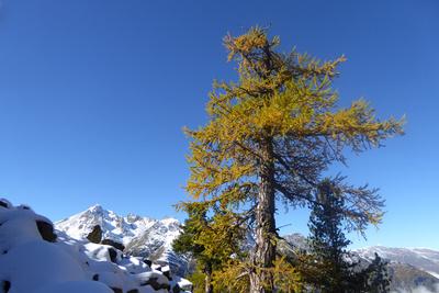 Herbst und Winter zugleich
