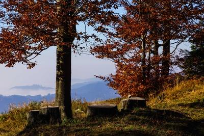 Herbst auf Schwarzwaldhöhen 3