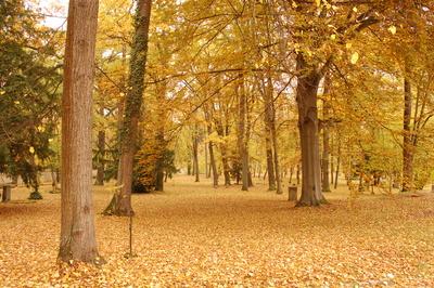 Weimar Herbst