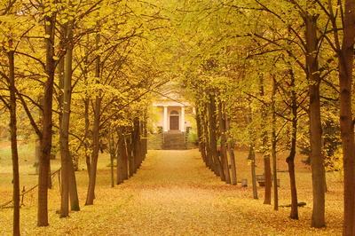 Herbst vor der Fürstengruft