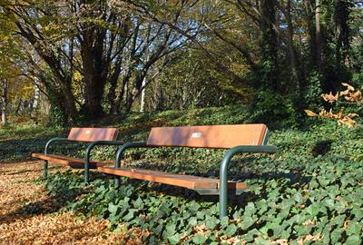 Herbstspaziergang im Kurpark Oberlaa 08
