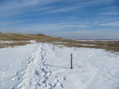 Odde im Schnee