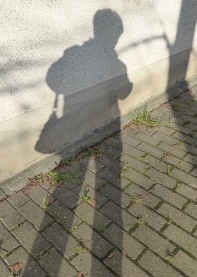 Schattenbild im November