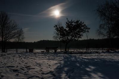 Erster Schnee im Mondlicht