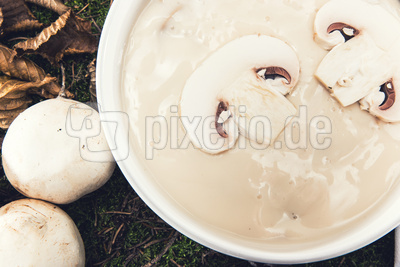 leckere Pilssuppe