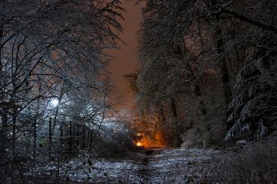 Winterpracht über Nacht (1)