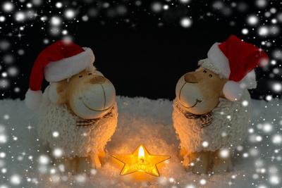 Weihnachten zu zweit