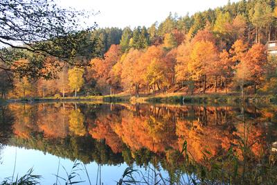 Spätherbst am Ronshäuser See