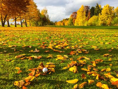 Golfen im Herbst 2