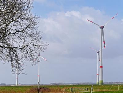 Neuer Windpark . . . . .