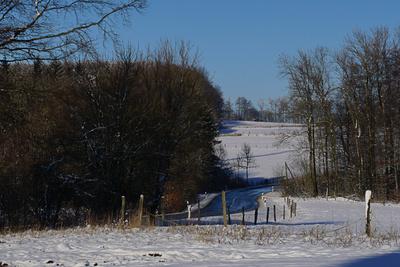 Im Winterland I