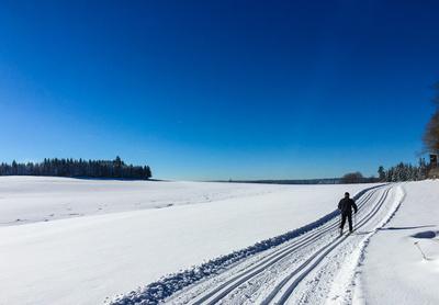 Langlauf-Loipe im Schwarzwald 03