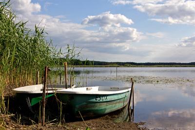Ruderboot Ferchesar