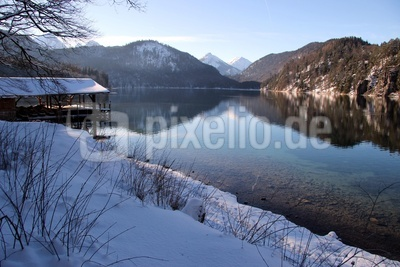 Winter am Alpsee