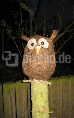 Nightowl is looking for you
