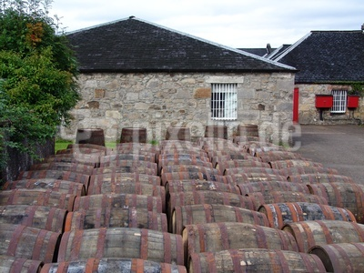 Whisky Distillery Tan