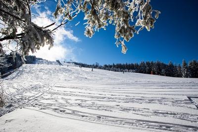 Skiabfahrt im Gegenlicht 3