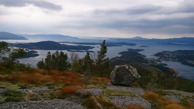 Felsen vor Fjordlandschaft