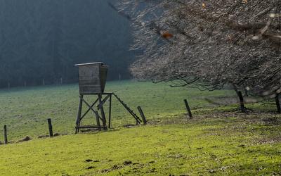 Hochsitz auf der Weide
