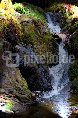 Wildwasser in den Highlands