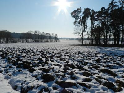 winterliches Ackerfeld